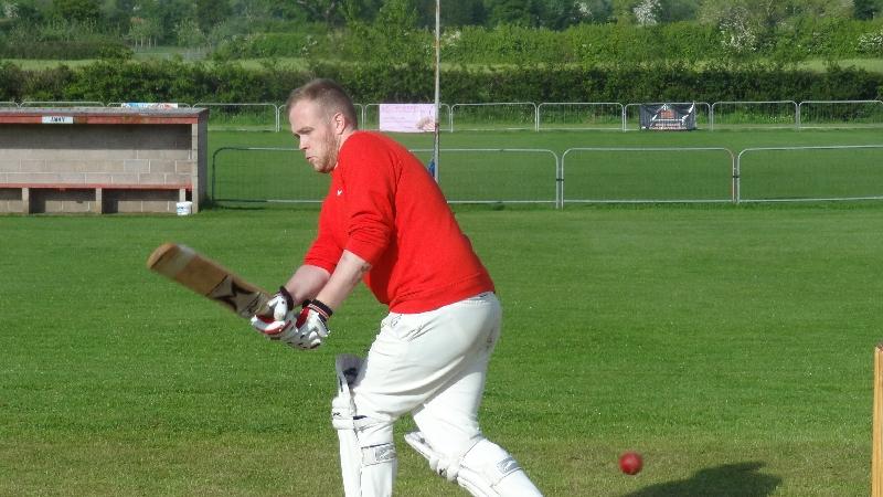 Cricket 029